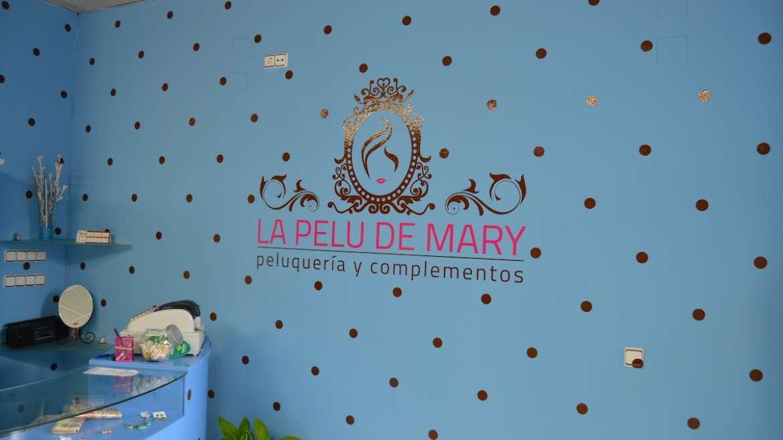 La Pelu de Mary